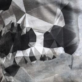 Skull-Front-Fragment