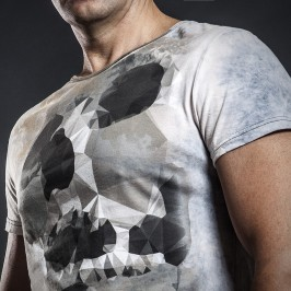 Skull-Front-Fragment2